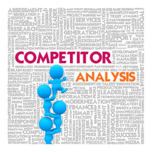 competitor and Niche Analysis